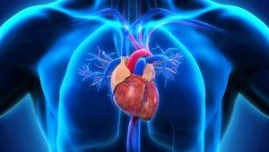 Herzbeschwerden: Symptome für Herzschwäche oft unauffällig