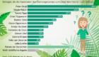 """Dschungelcamp: So unbekannt sind die """"Dschungelstars"""""""
