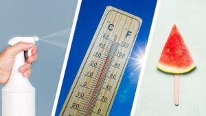 Hitze-Mythen im Check: Stoppt eine kalte Dusche die Schweißproduktion?
